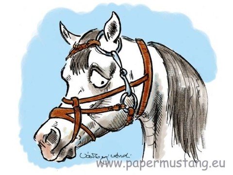 papermustang